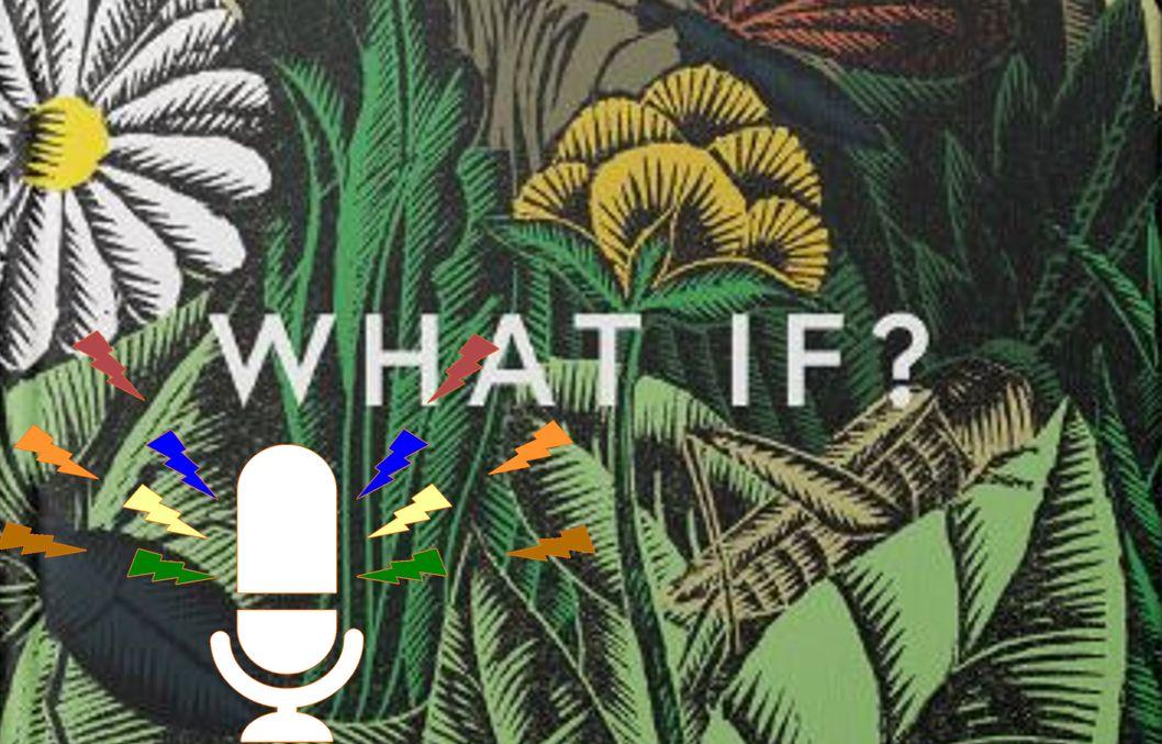 Rob Hopkins – Imagination taking power